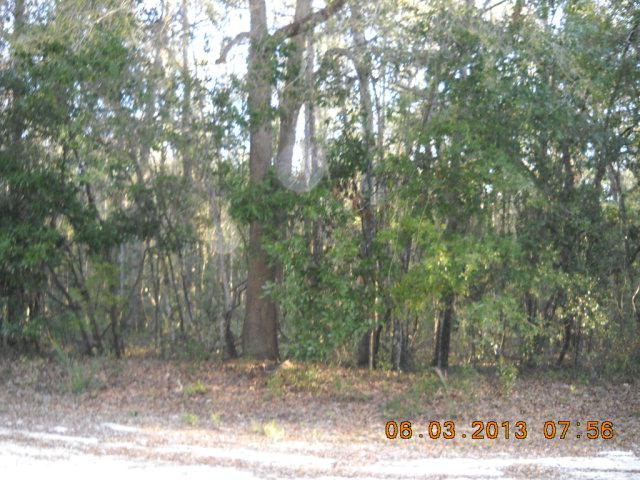 Lot 35 756th St - Photo 1