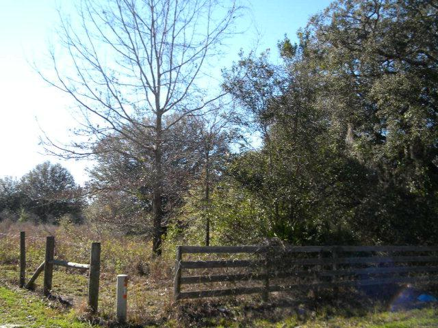 Old Fannin Rd NW, Trenton, FL 32693 (MLS #767935) :: Pristine Properties