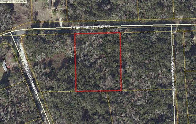 Lot 46 272nd Ave NE, Old Town, FL 32680 (MLS #768367) :: Compass Realty of North Florida