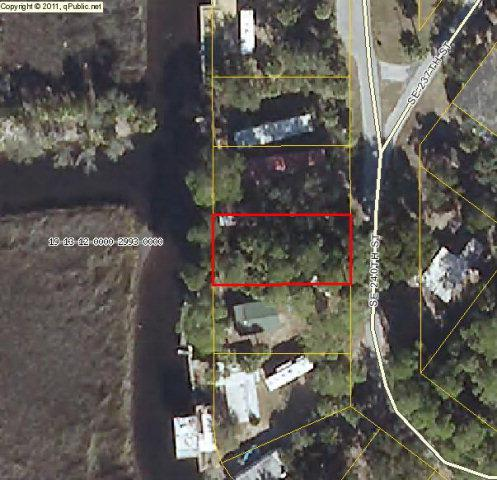 240th St SE, Suwannee, FL 32692 (MLS #768792) :: Pristine Properties