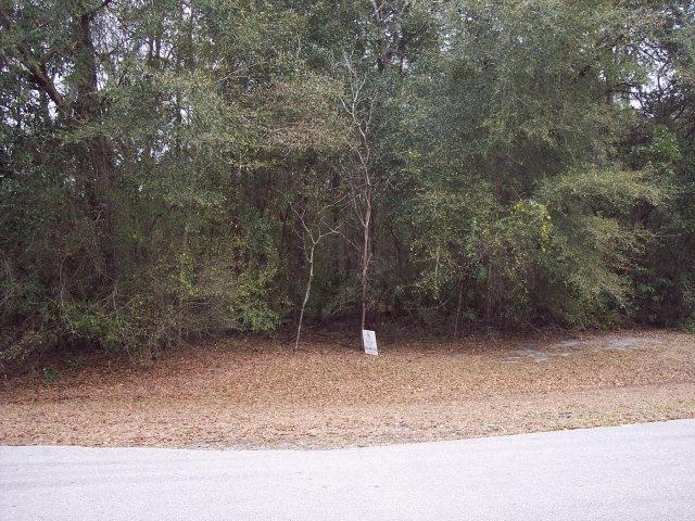 83RD COURT NW, Fanning Springs, FL 32693 (MLS #769655) :: Pristine Properties