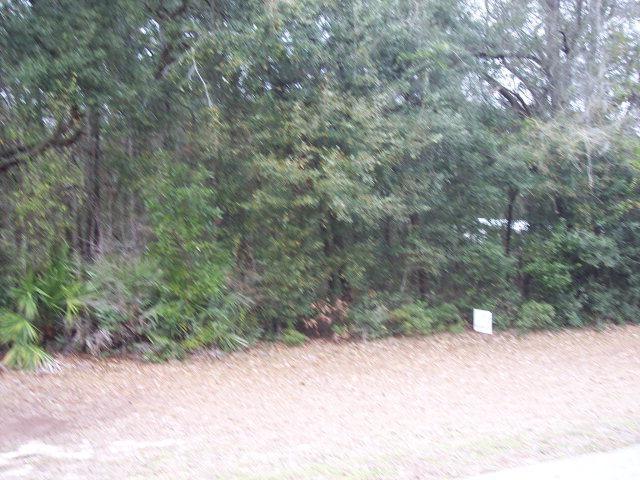 82ND TERR NW, Fanning Springs, FL 32693 (MLS #769656) :: Pristine Properties