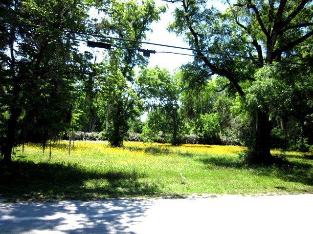 13 Ac Main St, High Springs, FL 32643 (MLS #770919) :: Pristine Properties