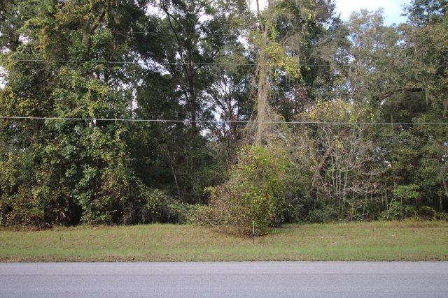 00 174th Pl NW, Fanning Springs, FL 32693 (MLS #771029) :: Pristine Properties