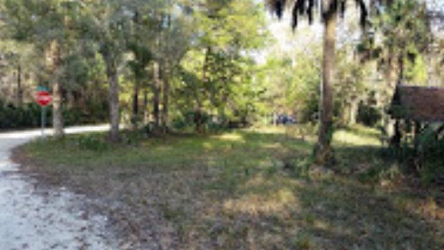 Lots 99 123rd Ave & , Steinhatchee, FL 32359 (MLS #771656) :: Pristine Properties