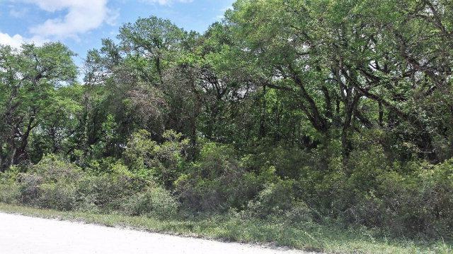 00 239th Ave NE, Old Town, FL 32680 (MLS #771762) :: Pristine Properties