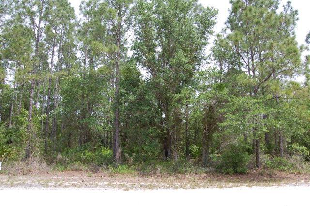 Sugar Hill Ln NE, Steinhatchee, FL 32359 (MLS #771876) :: Bridge City Real Estate Co.