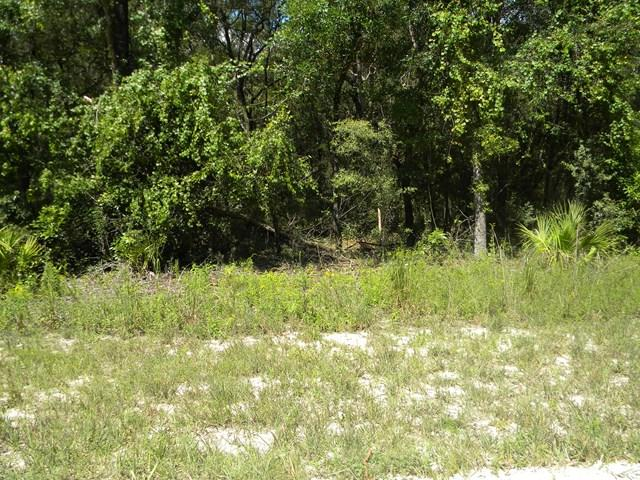 LOT 5 133RD LANE NW, Chiefland, FL 32626 (MLS #772556) :: Bridge City Real Estate Co.