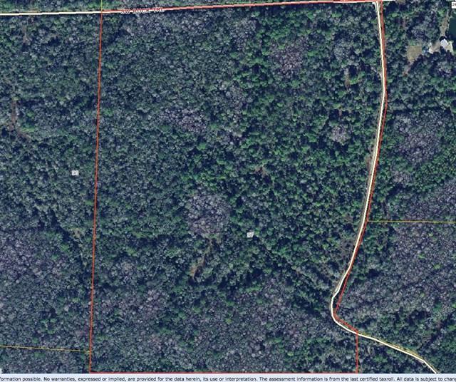 97 Buck Trail SW, Cedar Key, FL 32625 (MLS #772655) :: Pristine Properties