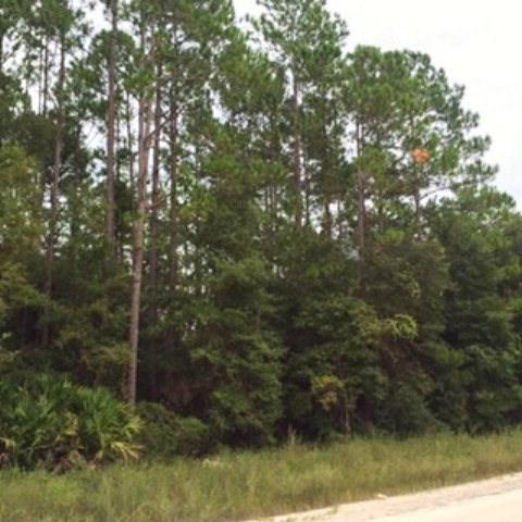 000 394 Ave NE, Old Town, FL 32680 (MLS #772704) :: Pristine Properties