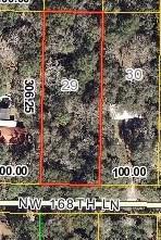 000 168TH LANE NW, Fanning Springs, FL 32693 (MLS #773037) :: Pristine Properties
