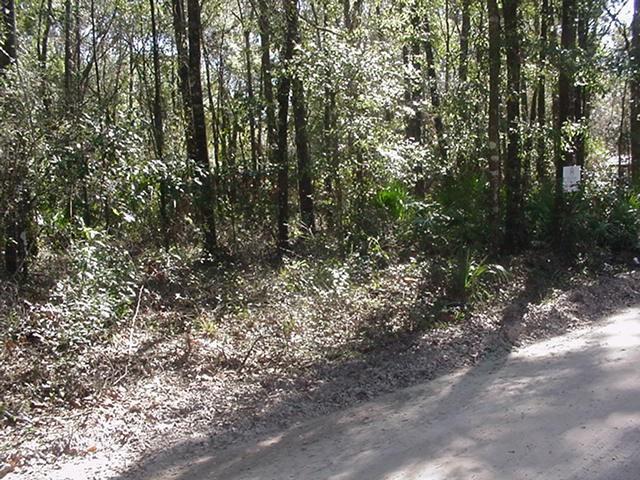 3 lots 82nd Terrace SW, Fanning Springs, FL 32693 (MLS #773255) :: Pristine Properties