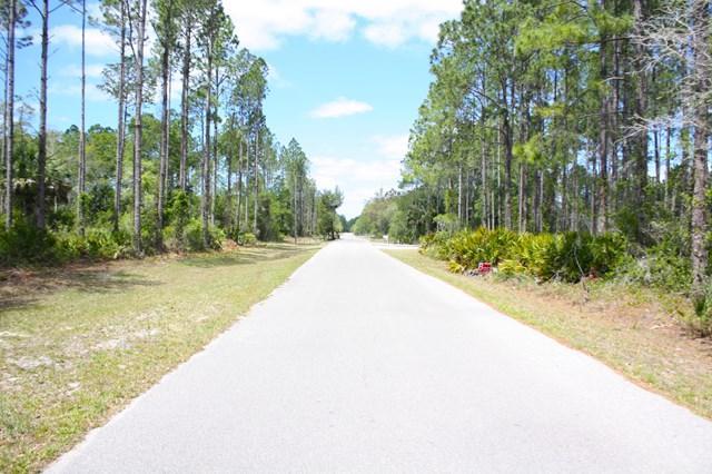 TBD Sugar Hill Lane, Steinhatchee, FL 32359 (MLS #773721) :: Pristine Properties