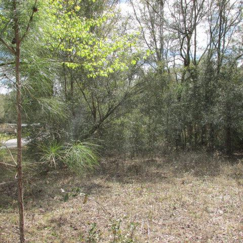 74th Terr NW, Chiefland, FL 32626 (MLS #773724) :: Pristine Properties