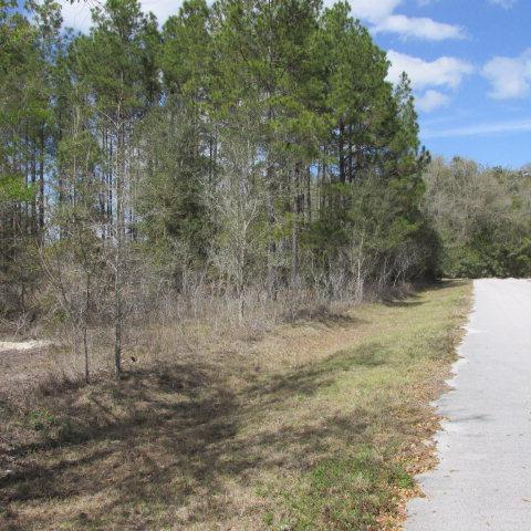 74th Terr NW, Chiefland, FL 32626 (MLS #773726) :: Pristine Properties