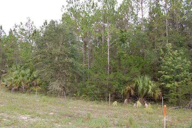 Lot 21 Highway 361 NW, Steinhatchee, FL 32359 (MLS #774293) :: Pristine Properties