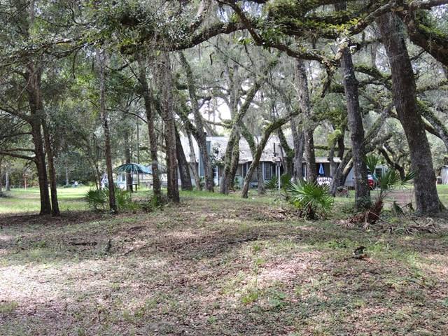 127 NE 394 Ave, Old Town, FL 32680 (MLS #774299) :: Pristine Properties