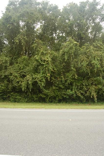 Lot 31 Highway 349 NE, Old Town, FL 32680 (MLS #774331) :: Compass Realty of North Florida
