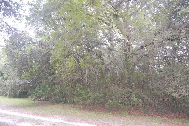 Lot 7 433RD AVE NE, Old Town, FL 32680 (MLS #774365) :: Pristine Properties