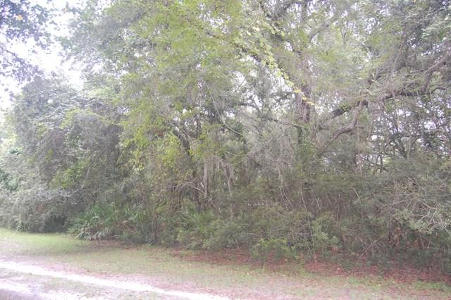 Lot 9 433RD AVE NE, Old Town, FL 32680 (MLS #774367) :: Pristine Properties