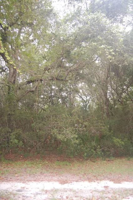Lot 4 436th Ave NE, Old Town, FL 32680 (MLS #774369) :: Pristine Properties