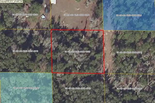Lot 7 819th St NE, Old Town, FL 32680 (MLS #774370) :: Pristine Properties