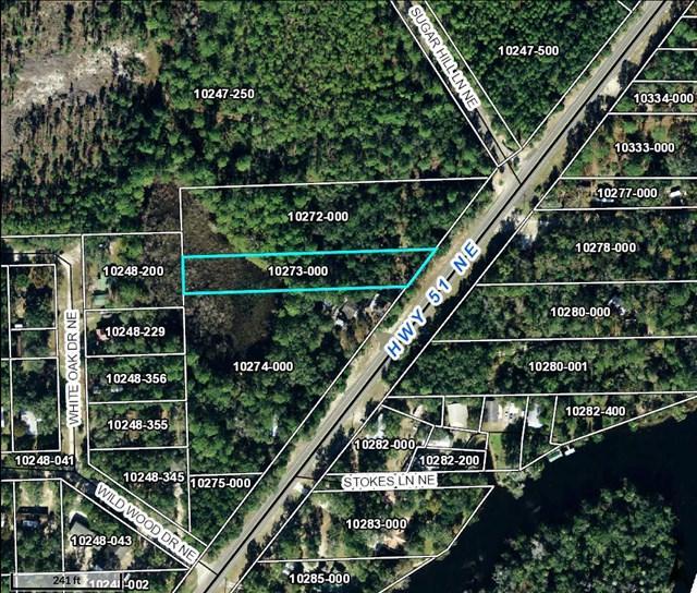 Hwy 51 Ne, Steinhatchee, FL 32359 (MLS #774431) :: Pristine Properties