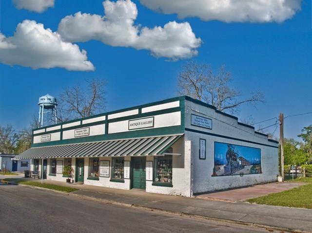 409 N Main Street, Trenton, FL 32693 (MLS #774568) :: Pristine Properties