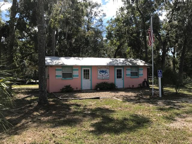 1408 SE Riverside Drive, Steinhatchee, FL 32359 (MLS #774631) :: Pristine Properties