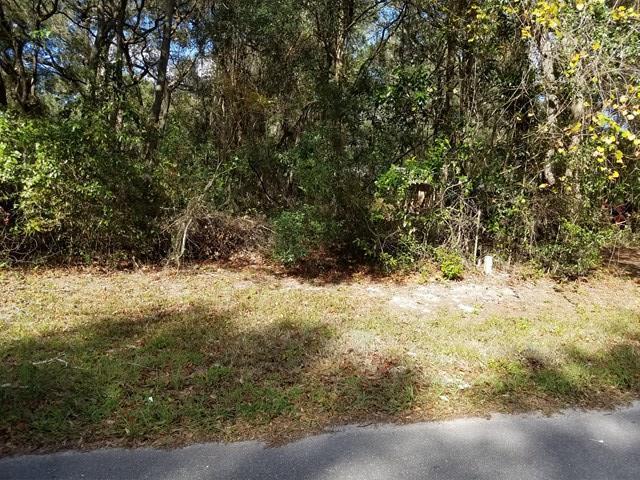 7971 168th Lane NW, Fanning Springs, FL 32693 (MLS #774697) :: Pristine Properties