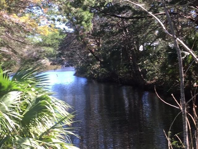 916 Hwy 51 NE, Steinhatchee, FL 32359 (MLS #774767) :: Compass Realty of North Florida