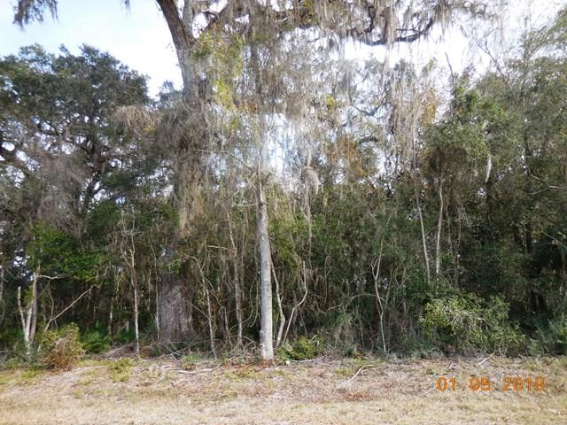 50 Ave NW, Chiefland, FL 32626 (MLS #774991) :: Bridge City Real Estate Co.