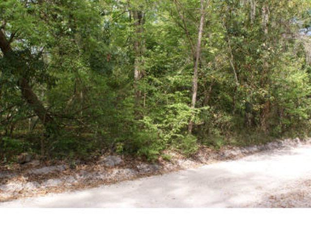 Lot 25 290th Ave NE, Old Town, FL 32680 (MLS #775055) :: Pristine Properties