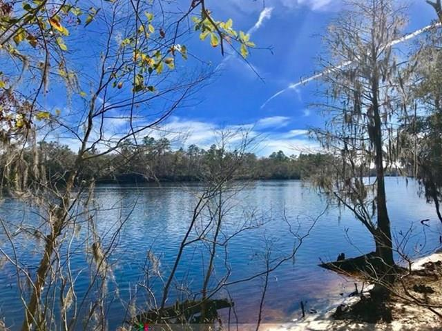 Riverview Road, Fanning Springs, FL 32693 (MLS #775154) :: Pristine Properties