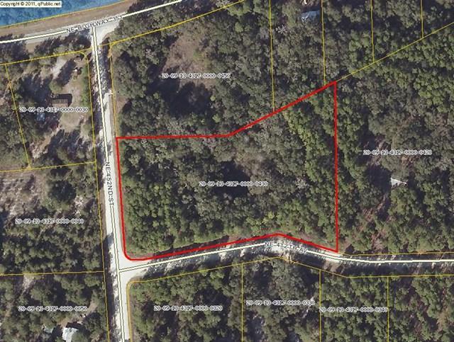 452nd St NE, Old Town, FL 32680 (MLS #775291) :: Pristine Properties