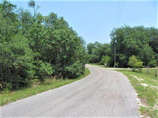 Lot 15 Riverview Road, Fanning Springs, FL 32693 (MLS #775386) :: Pristine Properties