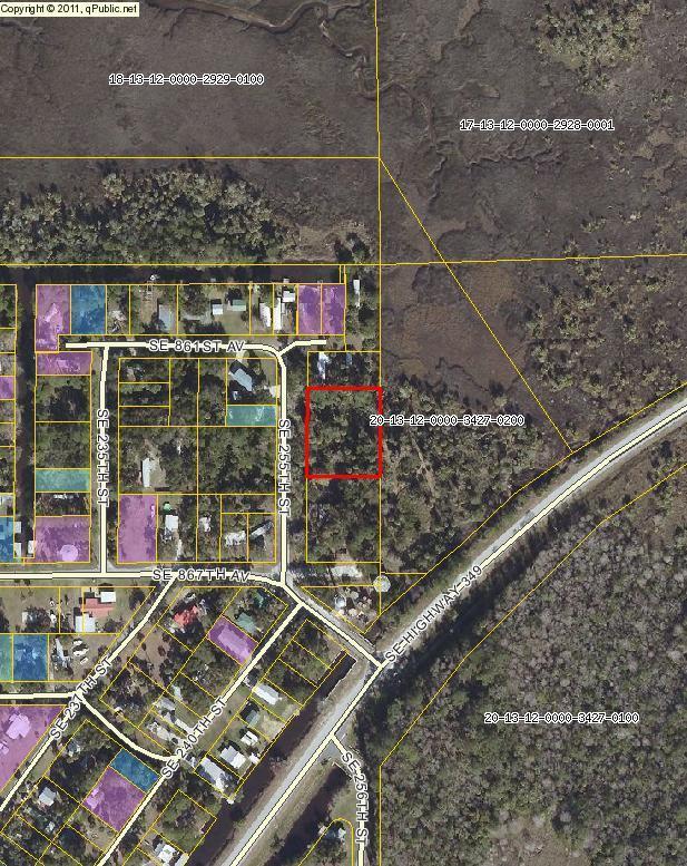 74 255 Street SE, Suwannee, FL 32692 (MLS #775539) :: Pristine Properties
