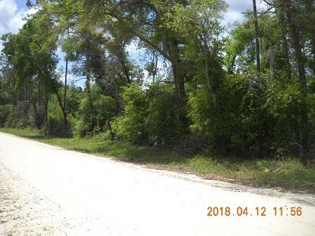 Lot 10 796th Street NE, Old Town, FL 32680 (MLS #775617) :: Pristine Properties
