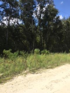 LOT 75 791ST - Photo 1