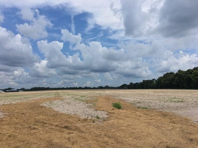 38 Acres County Road 340 NW, Bell, FL 32619 (MLS #776805) :: Pristine Properties