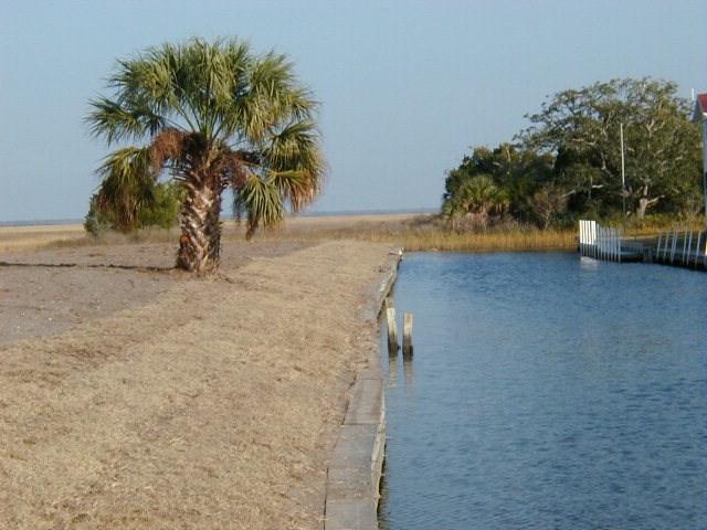 204 7th Ave E, Horseshoe Beach, FL 32648 (MLS #776817) :: Pristine Properties