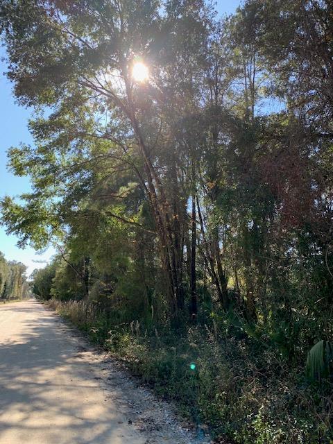 LOT 91 709TH ST SE, Old Town, FL 32680 (MLS #776895) :: Pristine Properties