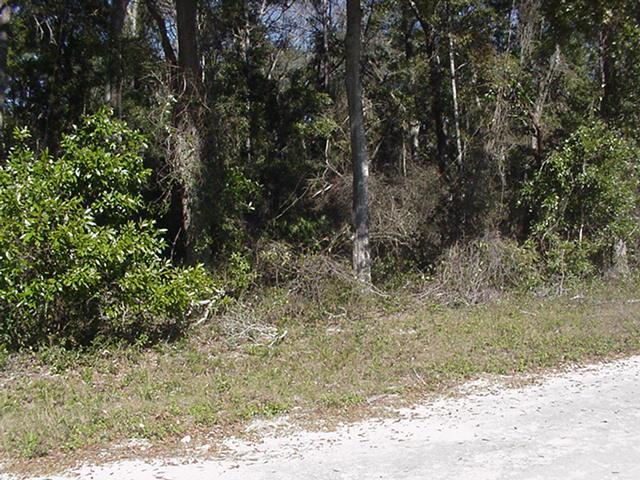 Lot 43 162nd St. NW, Trenton, FL 32693 (MLS #777059) :: Pristine Properties