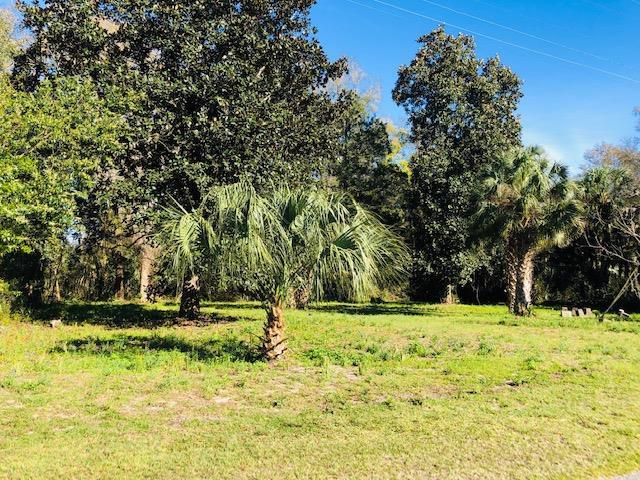 319 2 Street SE, Chiefland, FL 32626 (MLS #777454) :: Compass Realty of North Florida