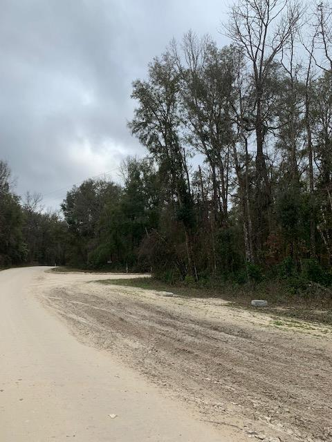 Lot 5 642nd Street NE, Old Town, FL 32680 (MLS #777691) :: Compass Realty of North Florida