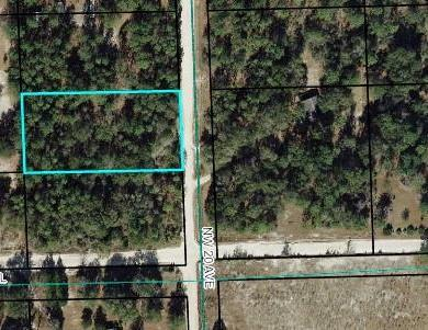 Nw 20 Ave NW, Bell, FL 32619 (MLS #777817) :: Pristine Properties
