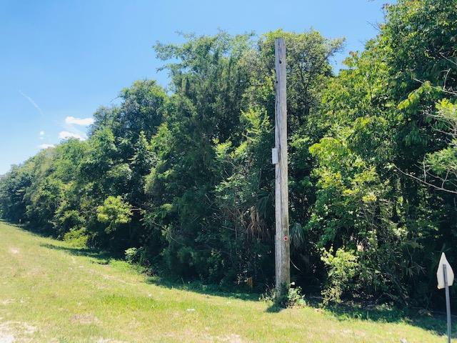 349 Highway NE, Old Town, FL 32680 (MLS #777931) :: Pristine Properties