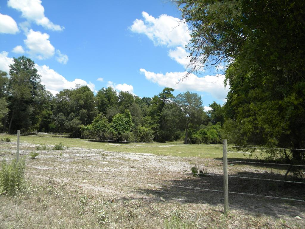 LOT 2 100th Avenue - Photo 1