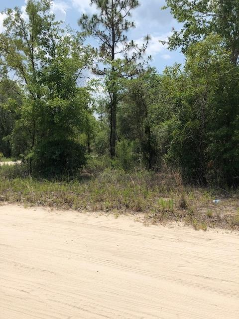 TBDlot15 65th Lane NE, Williston, FL 32696 (MLS #778043) :: Pristine Properties