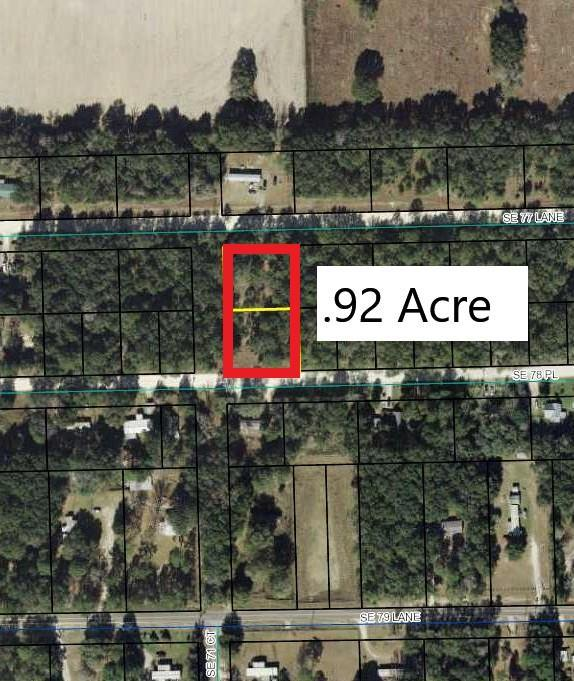 78 Pl SE, Trenton, FL 32693 (MLS #778139) :: Pristine Properties
